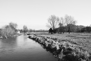 River Itchen in Winchester, home of lawyers Thomas Simpson Solicitors